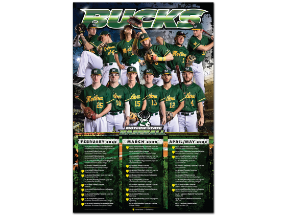 Calendar, Schedule, Sports, Baseball, Team Photo