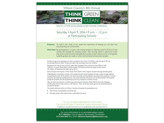Think Green Think Clean Flyer