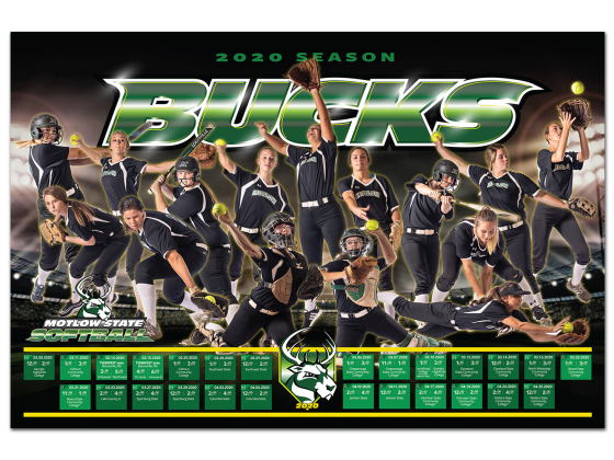 Softball Schedule, Print Design, Print Production, Photoshoot, Team photo, Action shots
